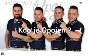 Ansambel Opoj